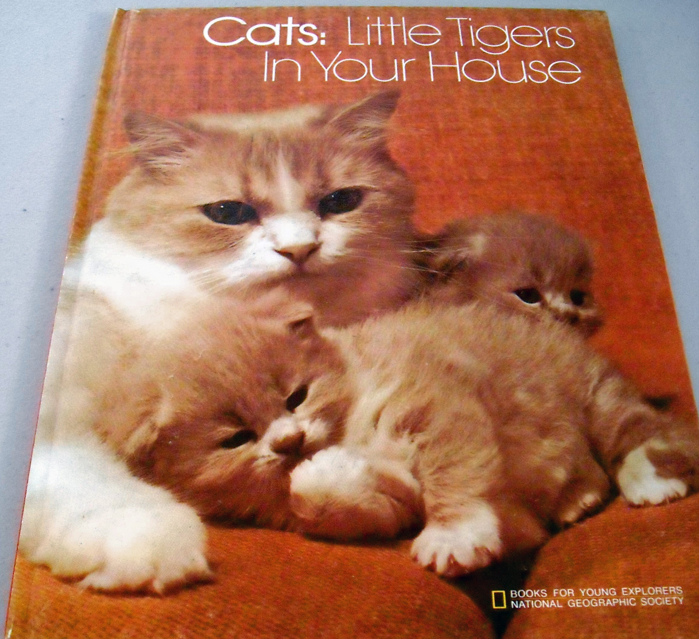 Book Pertaining To Cats
