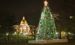 Boston Common Lights WeekendPick