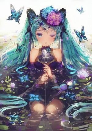 蝴蝶 Miku