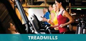 Buy Treadmill in Panchkula   Sports Indeed
