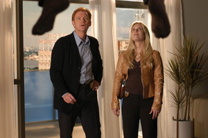 CSI: Miami ~ Horatio and Calleigh