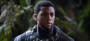 Chadwick in Black panter, panther