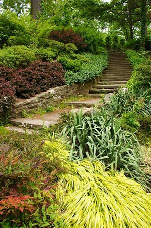 Cleveland Botanical Garden Steps