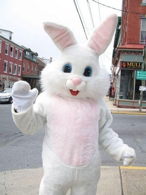 Cute White Easter Bunny Costume