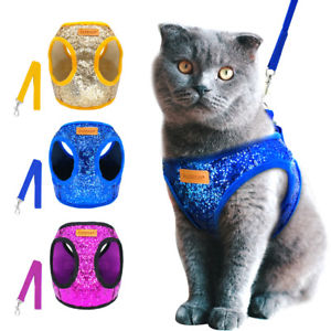 Differnt Types Of Cat Harnesses