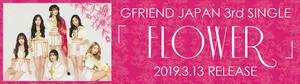 GFRIEND Jepun OFFICIAL SITE