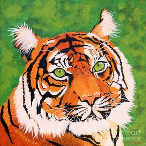 Green-Eyed Tiger