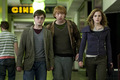 Harry Potter and The Deathly Hallows part 1 - harry-potter photo
