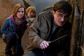 Harry Potter and The Deathly Hallows pt 2 - harry-potter photo