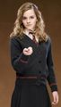 Harry Potter and The Order of the Phoenix - harry-potter photo