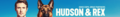 Hudson and Rex Suggestion Banner - hudson-and-rex fan art