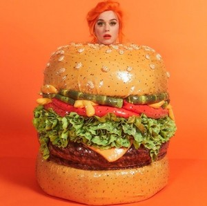 KATY PERRY BURGER lol XD
