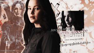 Katniss Everdeen 壁纸 - The Hanging 树