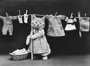 Laundry jour