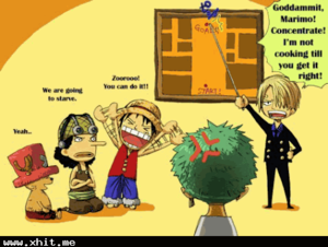 Lessons for Zoro