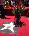 Luther Vandross Postumous Walk Of Fame