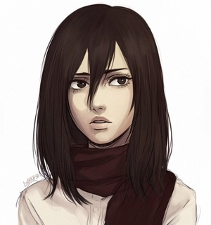 Mikasa Ackerman ~ Attack on Titan
