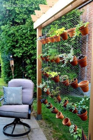 Mini Garden Space