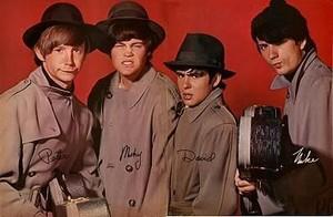 Monkees یا bandits!? 🤨