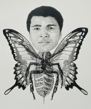 Muhammad Ali Float Like A borboleta Sting Like A Bee