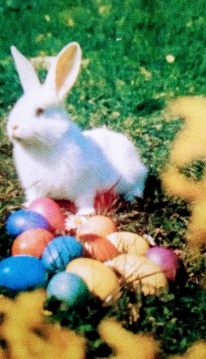 White Easter Bunny Guarding the Easter Eggs