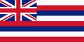 Hawaii State Flag - united-states-of-america fan art