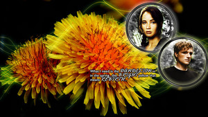 Peeta/Katniss wallpaper - Bright Yellow