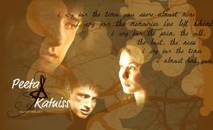 Peeta/Katniss kertas dinding - Memories