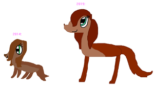 Sasha (2014 VS 2019)