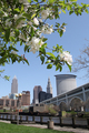 Springtime In Cleveland