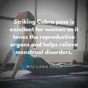 Striking कोबरा Pose