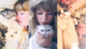 TAYLOR SWIFT AND THREE CATS
