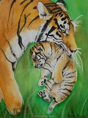 Tiger And Her Cub