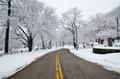 Winter In universität kreis