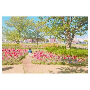 beautiful 花 garden