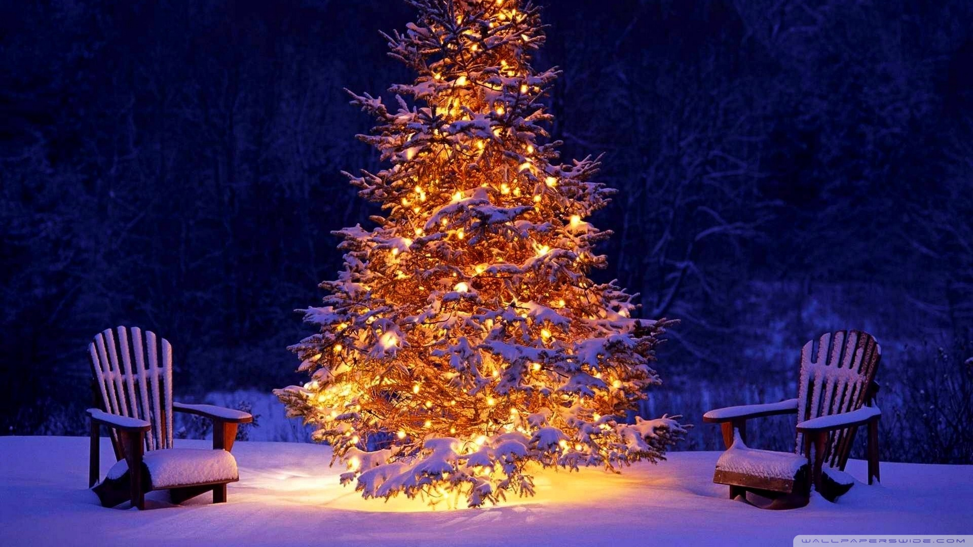 christmas outdoor decorations wallpaper 1920x1080