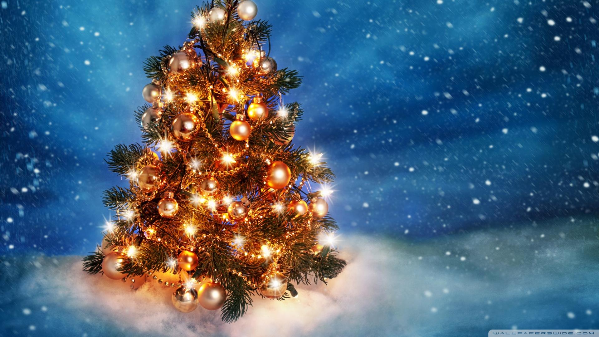 christmas tree 2015 wallpaper 1920x1080