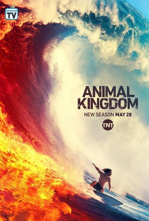 Animal Kingdom Season 4 Poster