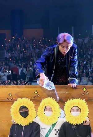 BTS Sunflowers
