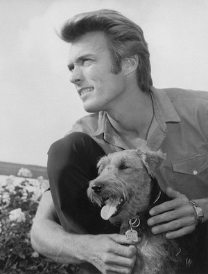 Clint Eastwood photographed with his beloved Airedale テリア (1960)