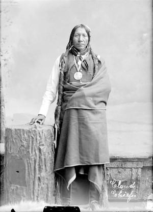 بادل Chief (Cheyenne) Peace Medal - گھنٹی, بیل - 1874