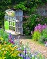 English Garden Gate - cherl12345-tamara photo