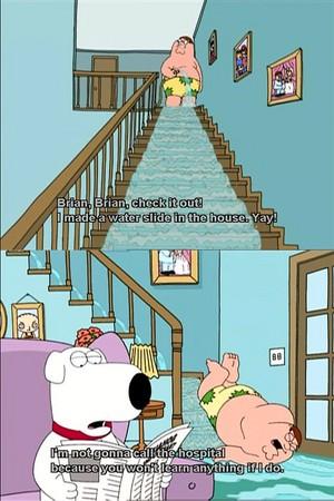 Family Guy Petikan