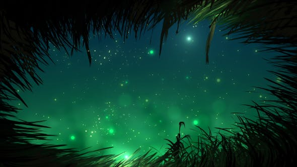 Firefly Art