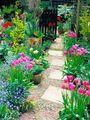 Flower Garden With A Walking Path - cherl12345-tamara photo