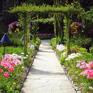 फूल Garden