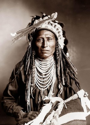 Heebe-tee-tse (Shoshone Nation) 1899