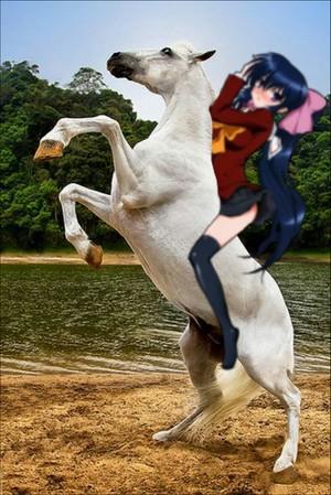 Himari Noihara with her Beautiful White Horse