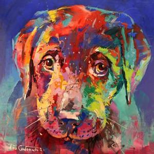 Labrador 子犬
