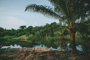 Lokossa, Benin